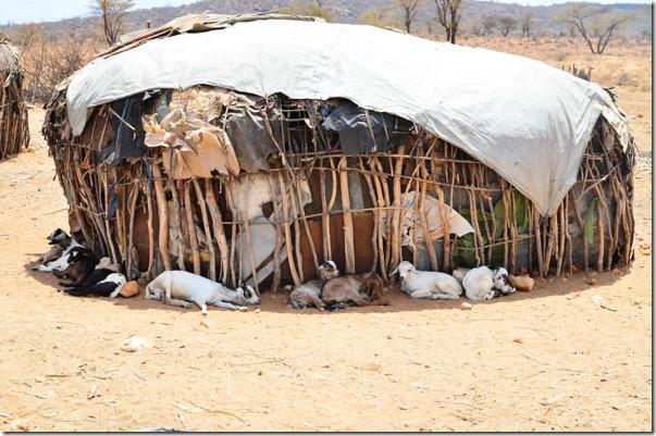 KenyaSamburu_1372_150806
